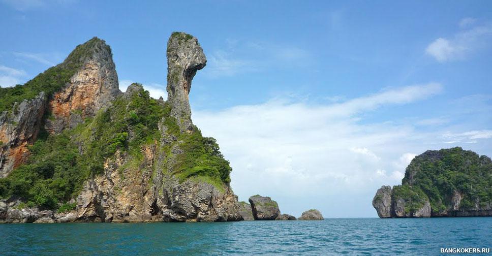 Куриный остров (Chicken Island)