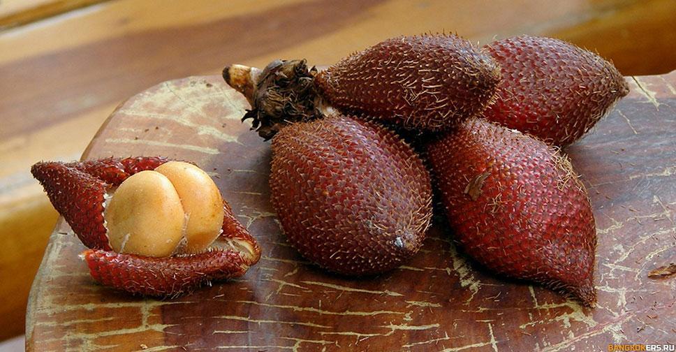 Салак - змеиный фрукт