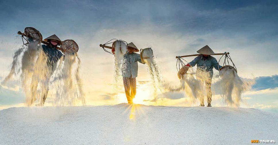 Как добраться на соляную ферму во Вьетнаме