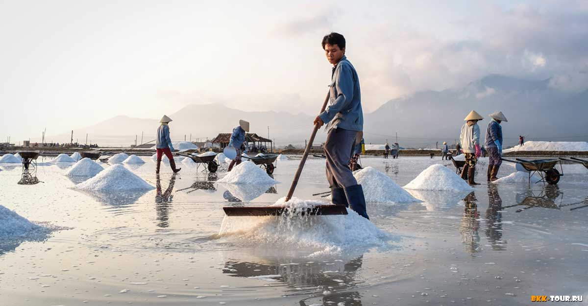 Где посмотреть как добывают соль во Вьетнаме