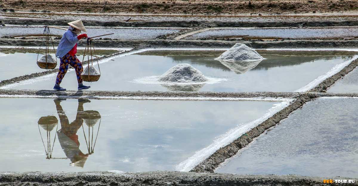 Где находятся соляные фермы во Вьетнаме
